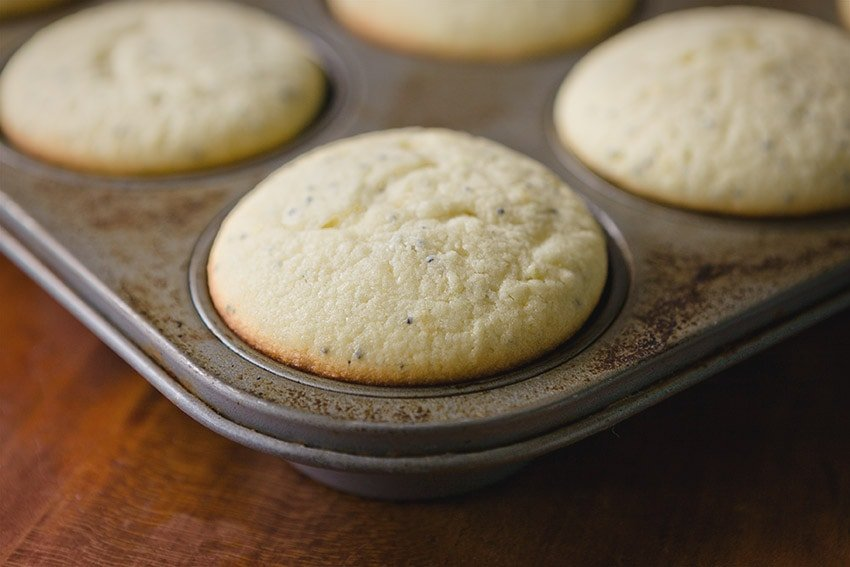 Lemon Poppyseed Muffins recipe from Quill & Glass blog